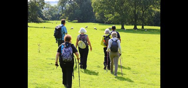 Walking across sheep pastures © Gary Johnson
